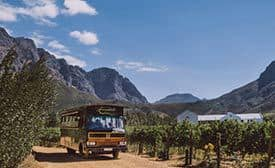 tram style bus on a wine tour in Franschhoek