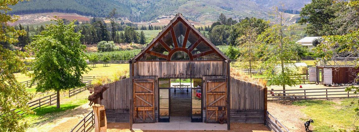 Pigcasso Farm