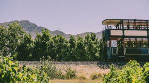 Hop-On Hop-Off Wine Tram Experience
